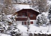 Ferienhaus Skifahren Österreich-Winter PAE00057
