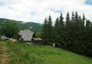 Hütte mit Hund-Aussen PBF00198