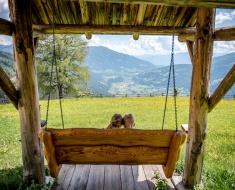Hütte auch für Hundeeigentümer
